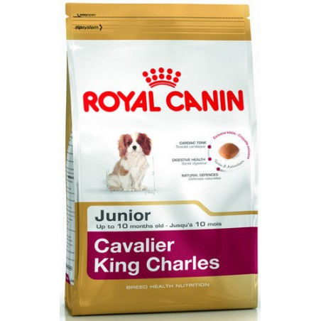 Royal Cavalier KingCharles...