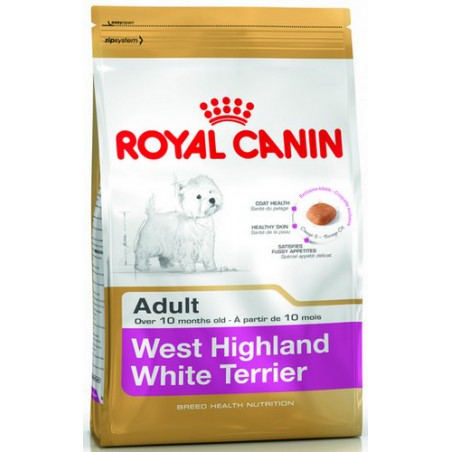 Royal White Terrier Adult...